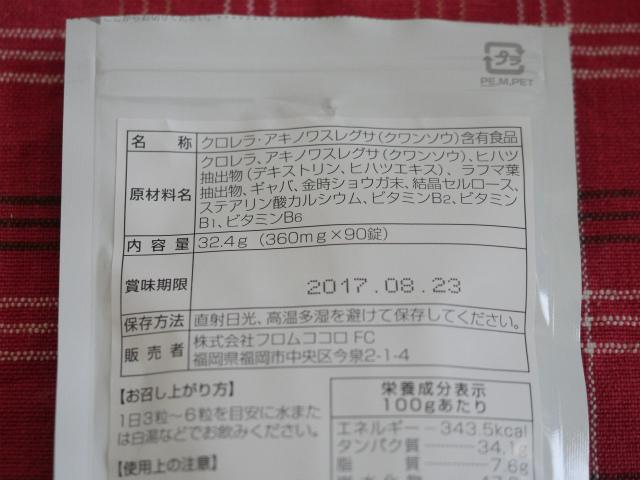 P1010516